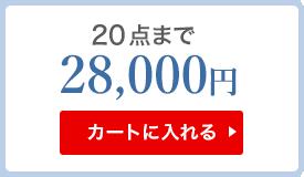 20点まで 26000円