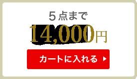 5点まで 13000円